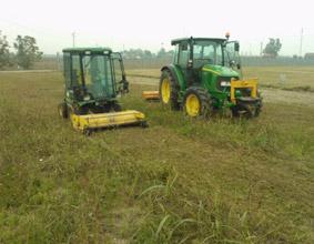 manutenzione del verde bologna